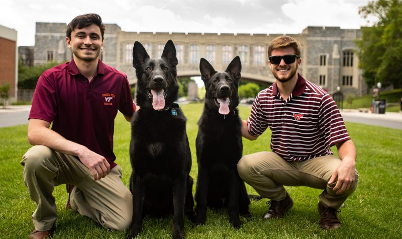 Former VT roommates go to the dogs